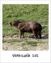 2012_Venezuela