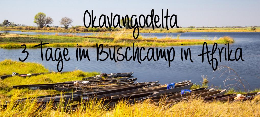 Okavangodelta: 3 Tage im Buschcamp in Afrika