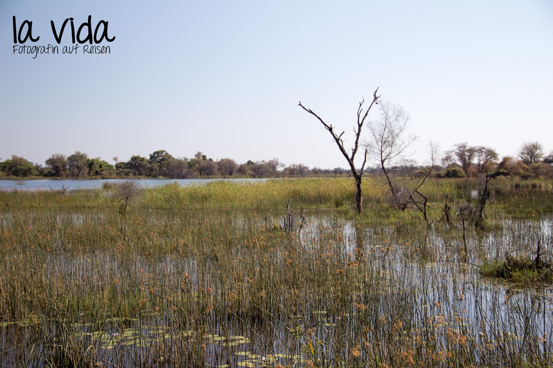Botswana-Sambia06