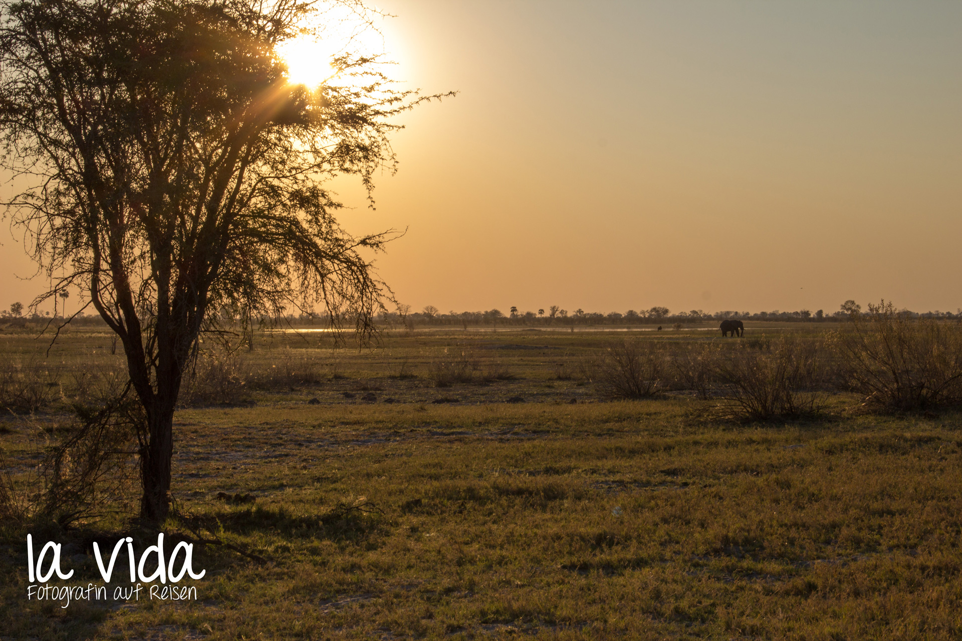 Botswana-Sambia11
