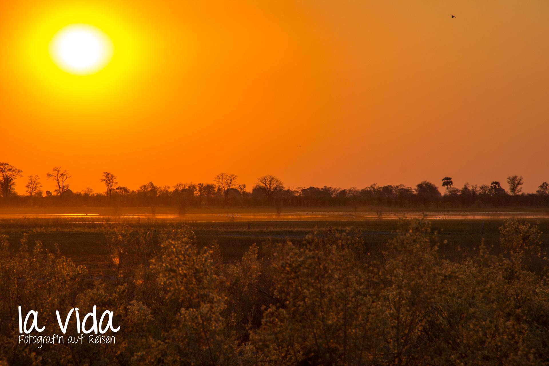 Botswana-Sambia17
