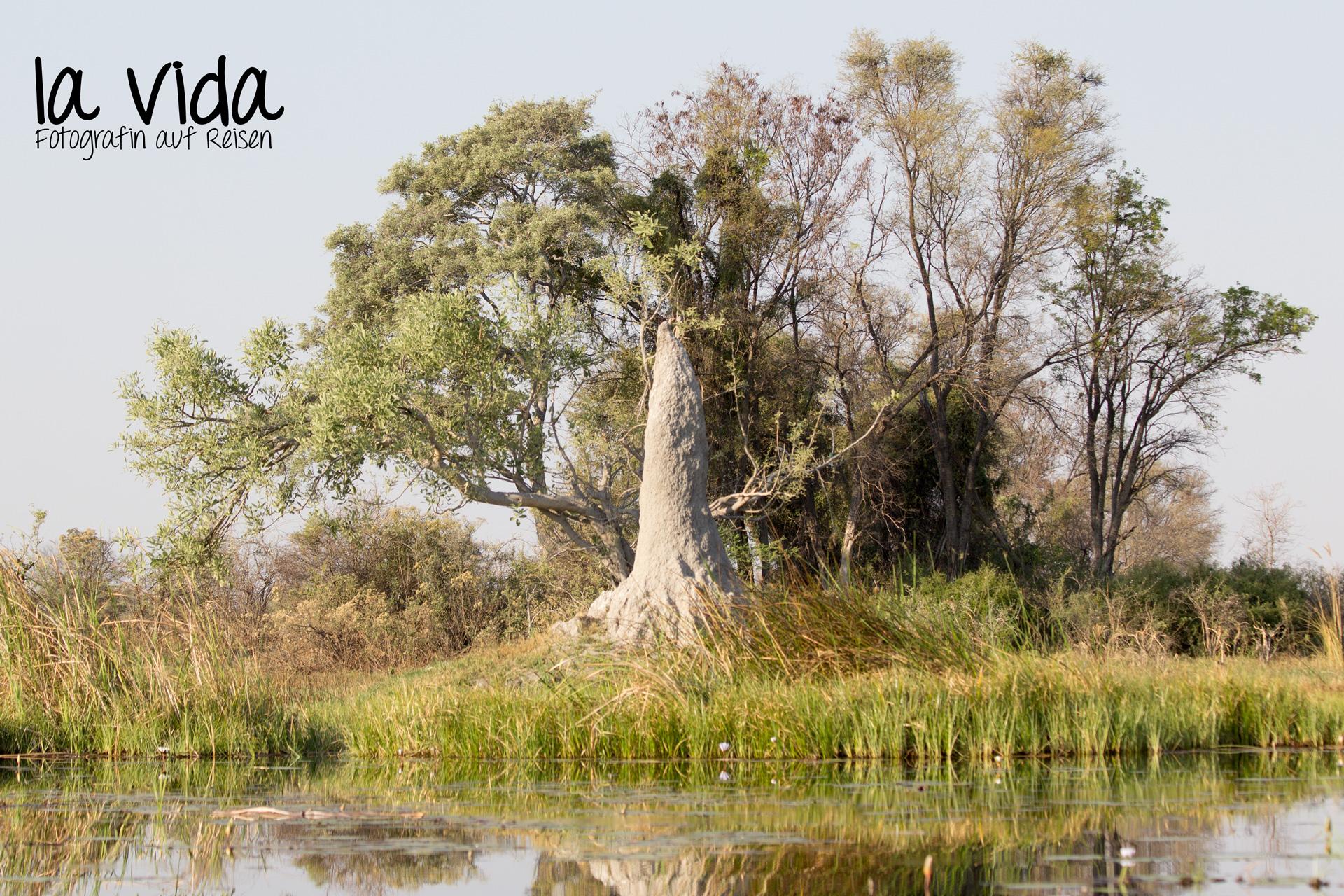 Botswana-Sambia20