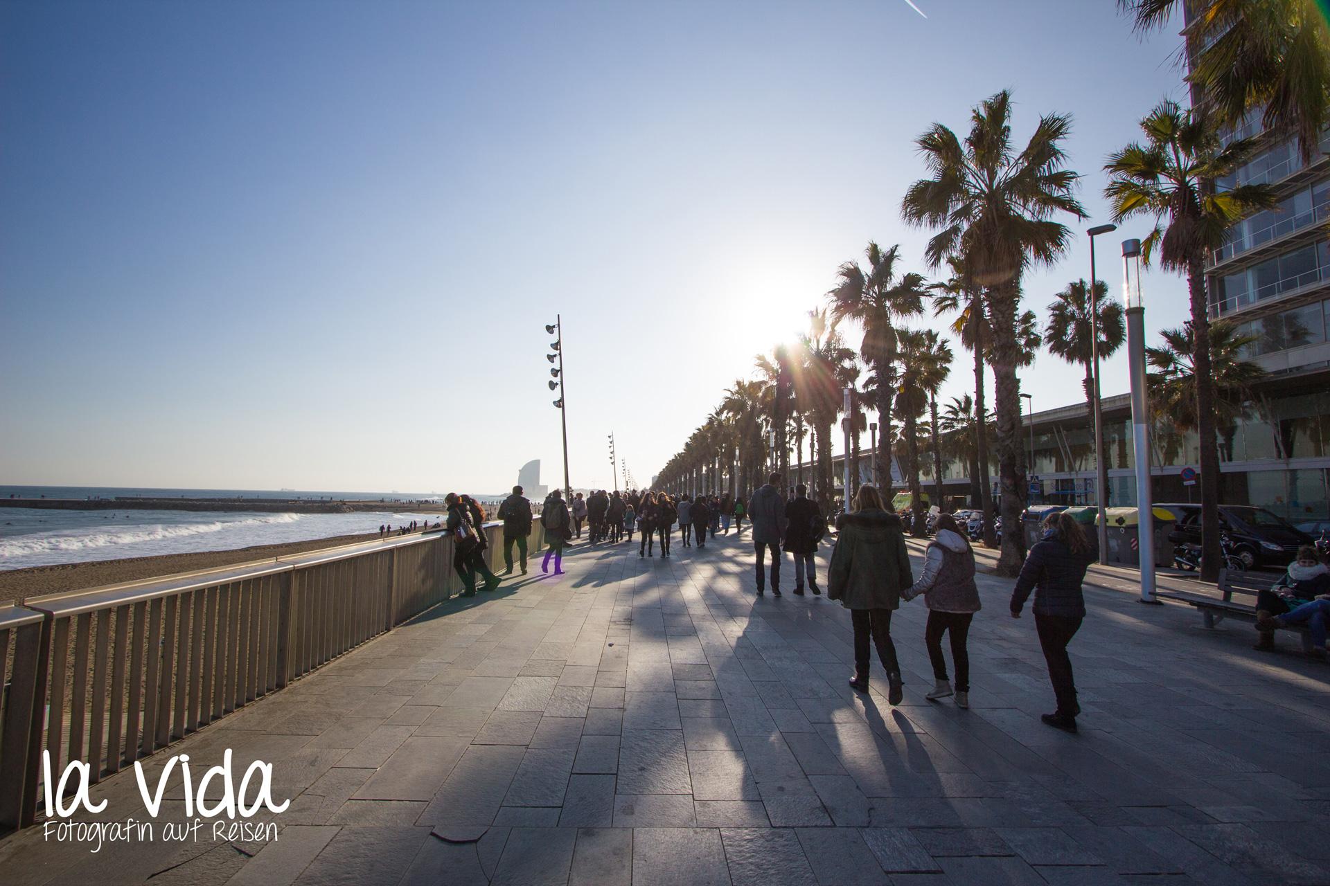 Winter_Barcelona