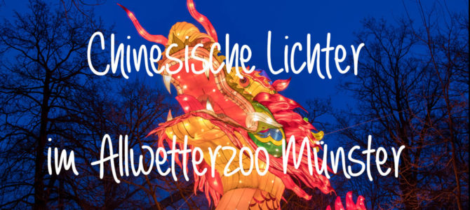 """""""Chinesische Lichter"""" im Allwetterzoo Münster"""