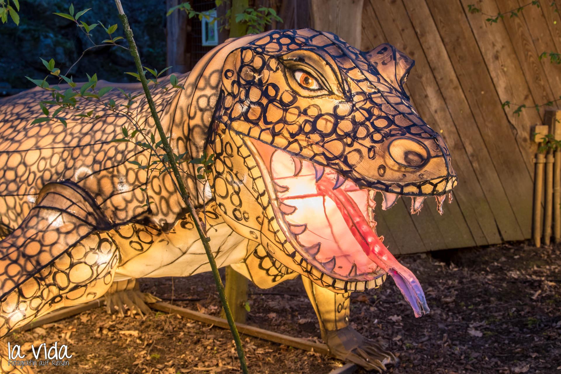 Köln Zoo Lichter