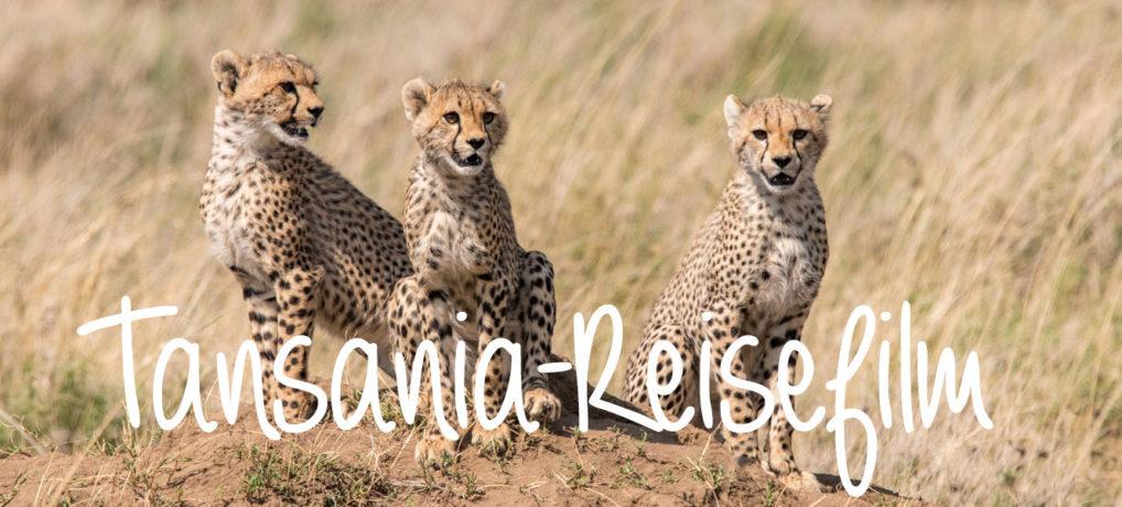 Mein Reisefilm: Rundreise durch Tansania und Sansibar
