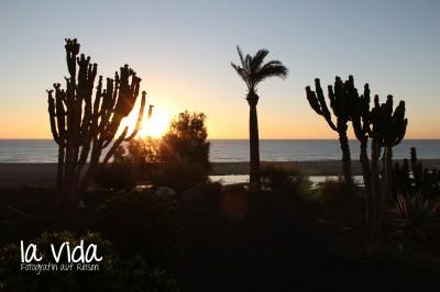 Fuerteventura15