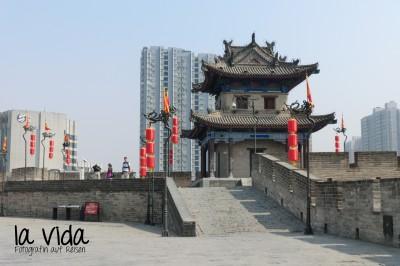 China36
