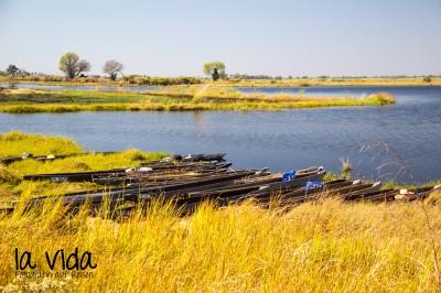 Botswana-Sambia08