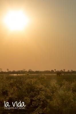 Botswana-Sambia12