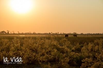 Botswana-Sambia14