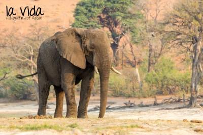 Botswana-Sambia40