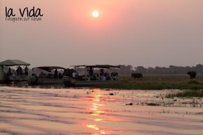 Botswana-Sambia43