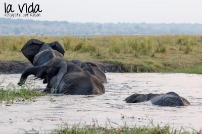 Botswana-Sambia45