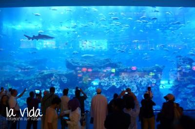 Dubai40