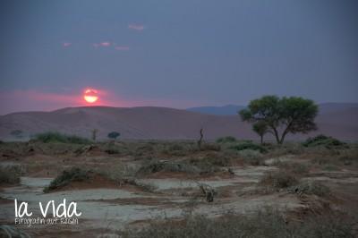 Namibia013