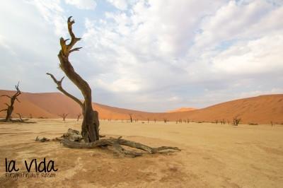 Namibia018
