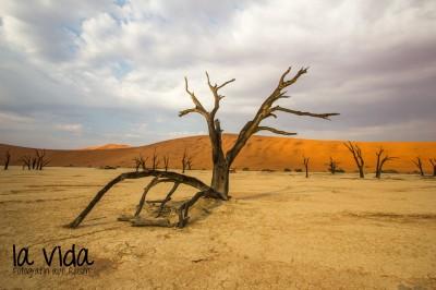 Namibia020