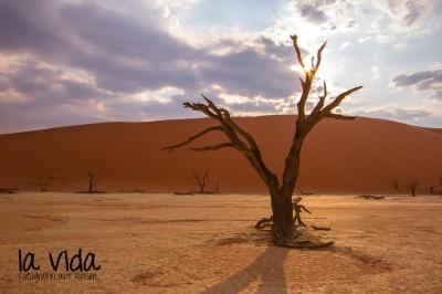 Namibia021