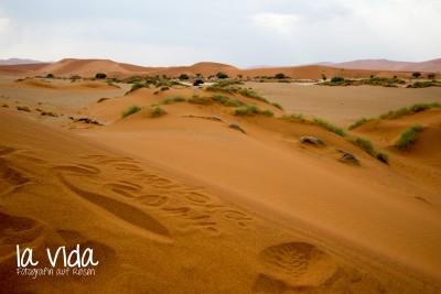Namibia025