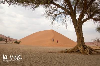 Namibia029