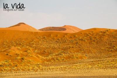 Namibia040