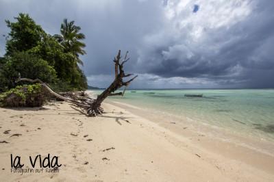 Seychellen04