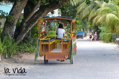 Seychellen43