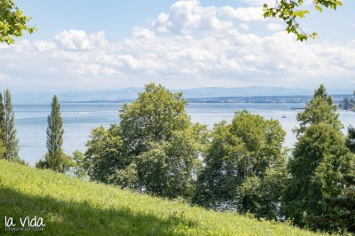 Bodensee-038