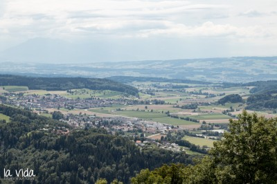 Schweiz-031