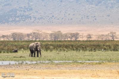 Tansania-027
