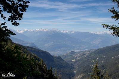 Schweiz-003
