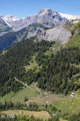Schweiz-004
