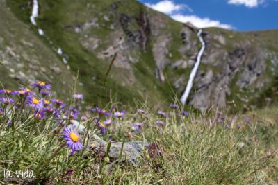 Schweiz-023