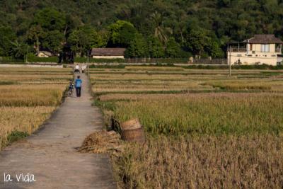 Vietnam-021