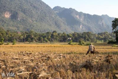 Vietnam-022