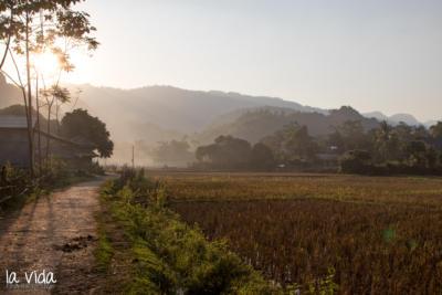 Vietnam-024