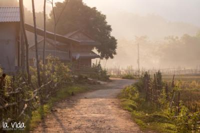 Vietnam-025