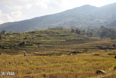 Vietnam-034