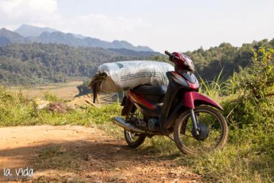 Vietnam-037