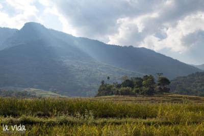 Vietnam-038