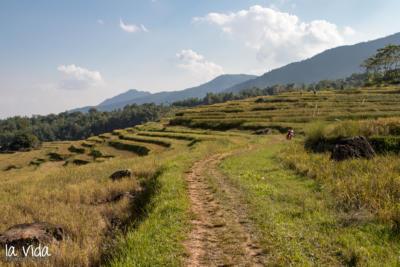 Vietnam-039