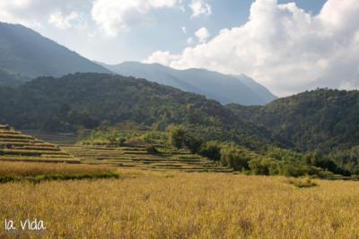 Vietnam-040