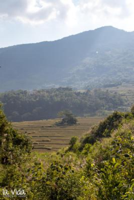 Vietnam-042