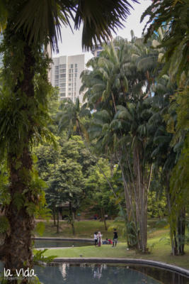 Malaysia-002