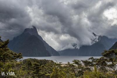 Neuseeland-097