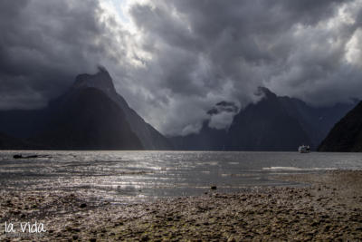 Neuseeland-100