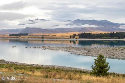 Neuseeland-166