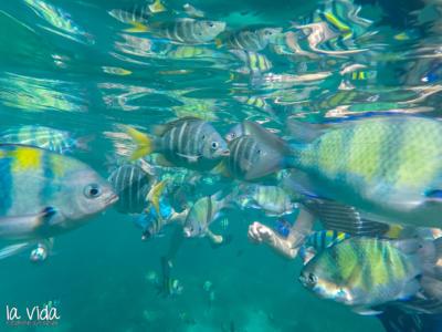 Thailand-segeln-022